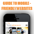 Guide to Mobile Websites
