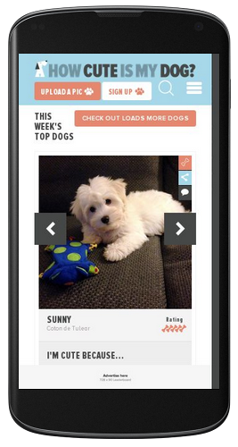 How Cute Is My Dog Mobile Web Design