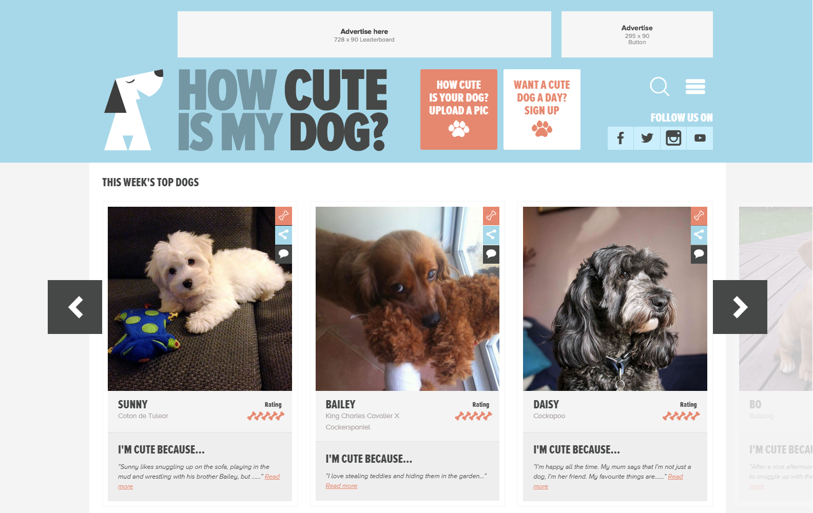 How Cute Is My Dog New Website