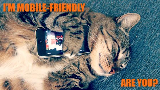 Mobile-Friendly Cat