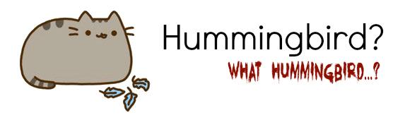 Pusheen Hummingbird