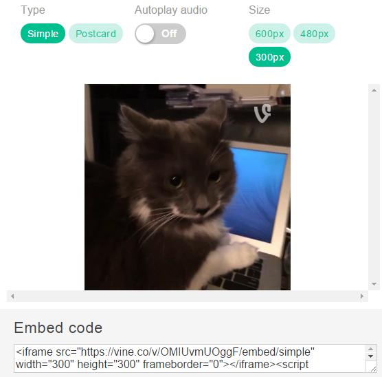 Vine Embed Code