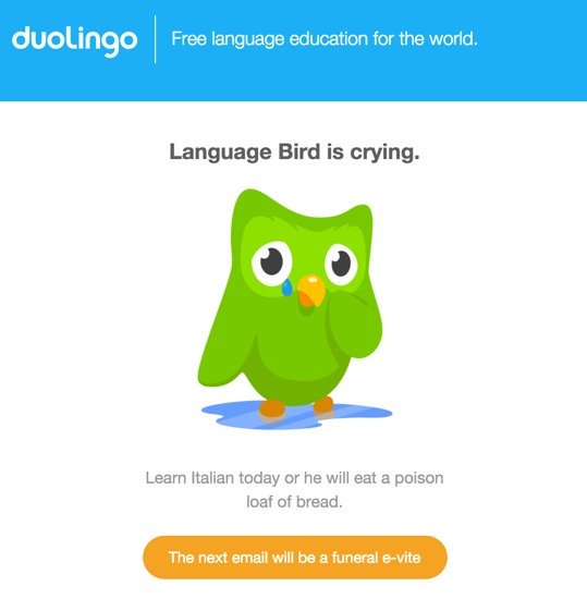Language bird is crying