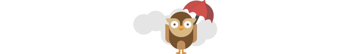 Google Owl Divider