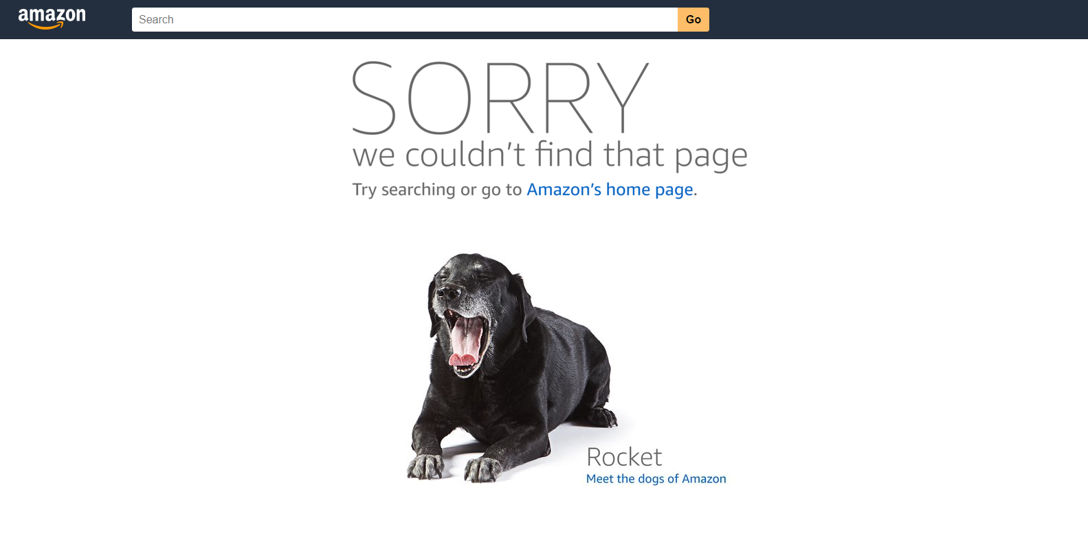 Amazon 404 page